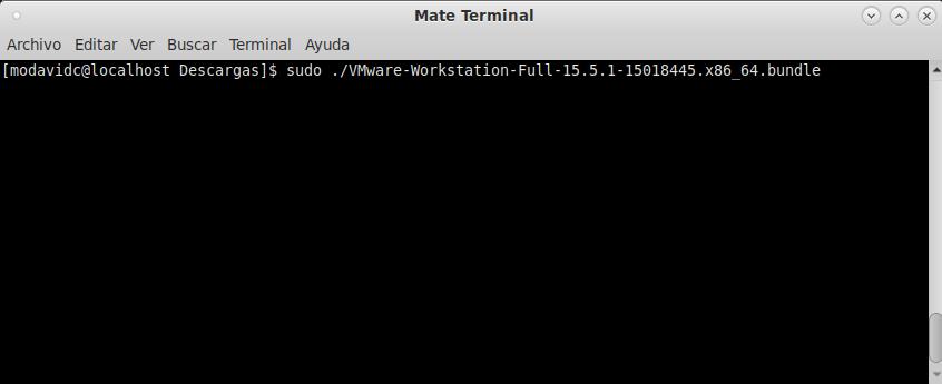 Terminal Fedora 31: Iniciando el instalador.